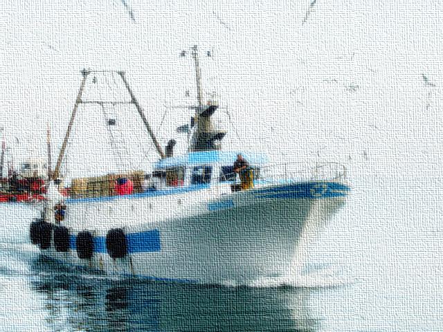 finanziamenti per giovani pescatori